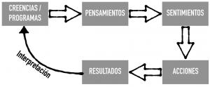 proceso-de-manifestacion